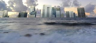 #491 情報の洪水